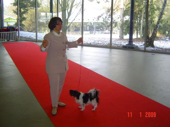 Paris Dog Show 01/09
