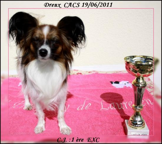 FIRST-LADY-DREUX-2011-4.jpg