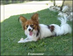 Frimousse-11-mois-3.jpg