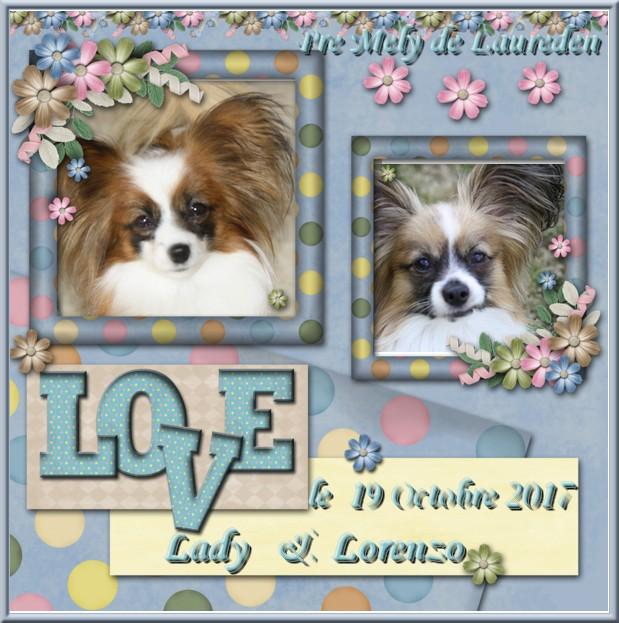 Cadre mariage lady et lorenzo