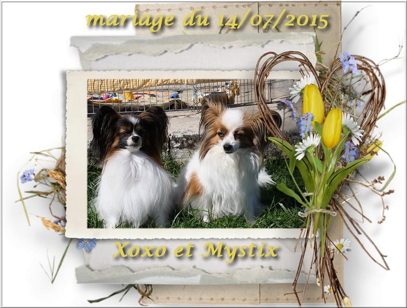 Cadre mariage xoxo et mimi 2015