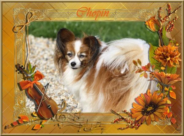 Chopin 10 ans