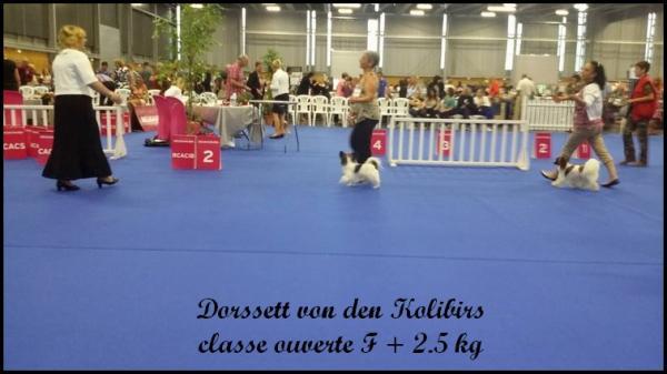 Dorssett chpt de france 03 05 17 4
