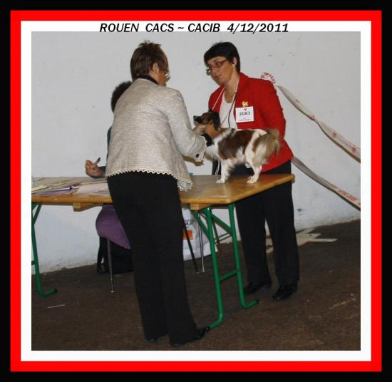 expo-de-rouen-0-12-2012-5.jpg