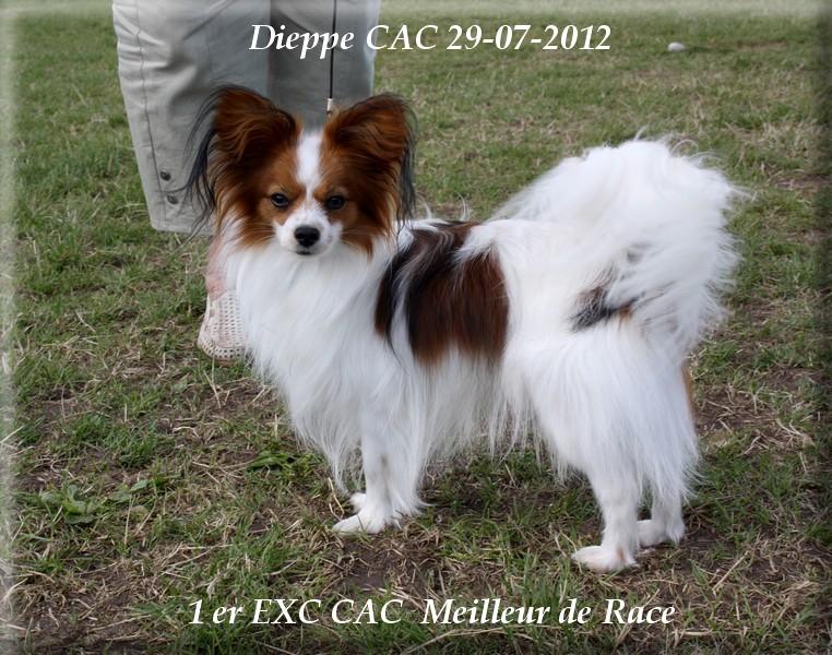 expo-dieppe-07-2012-018.jpg