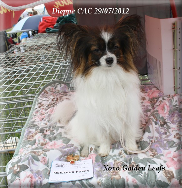 expo-dieppe-07-2012-064.jpg