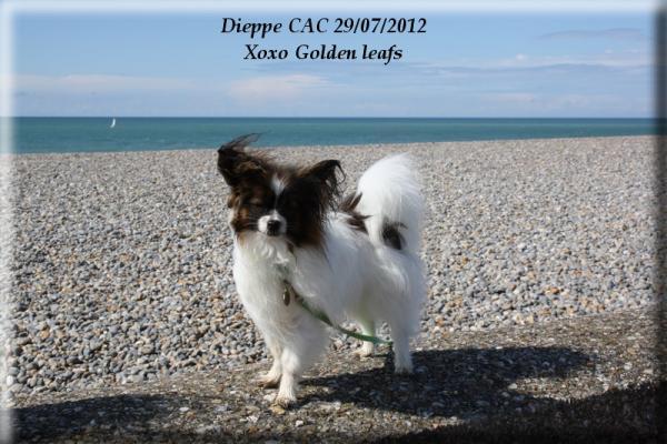 expo-dieppe-07-2012-108.jpg