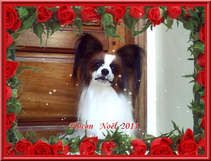 flocon-noel-2011-2.jpg