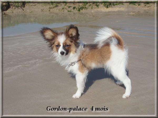 gordon-palace-4-mois-3.jpg