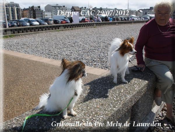 gribouille-a-dieppe-07-2012.jpg