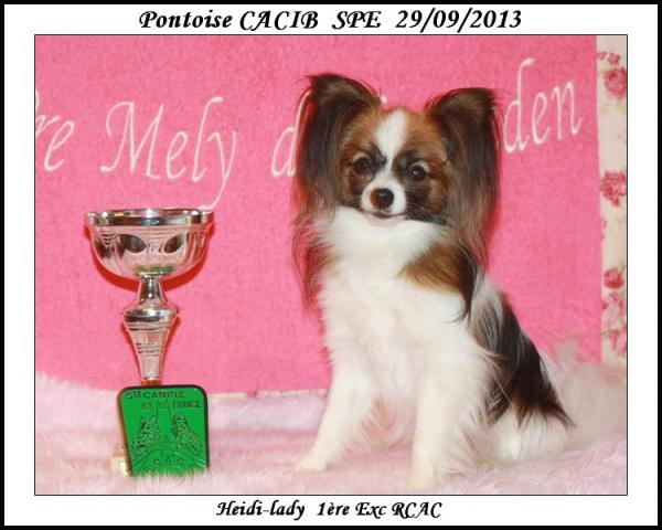 hedi-spe-pontoise-cacib-09-2013-1.jpg