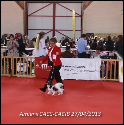 heidi-lady-amiens-2013-3.jpg