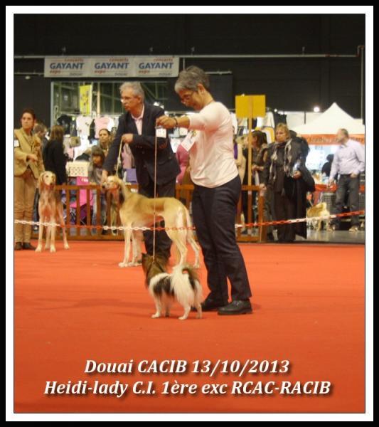 heidi-lady-douai-cacib-10-2013-1.jpg