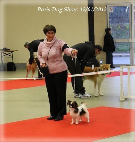 heidi-lady-paris-13-01-2013-10-1.jpg