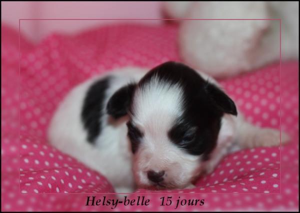 helsy-belle-15-jours-2.jpg