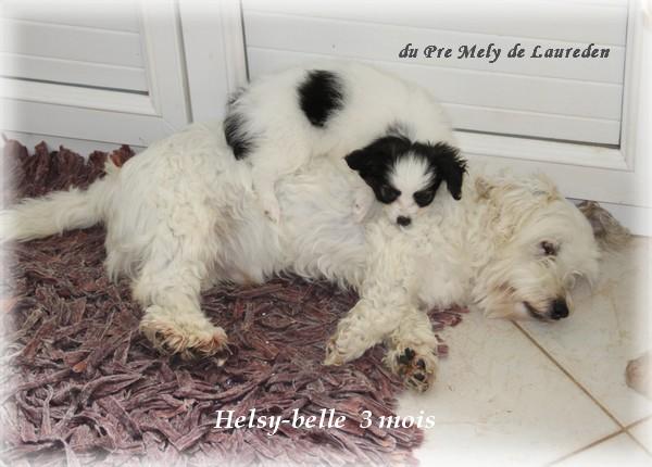 helsy-belle-3-mois-3.jpg