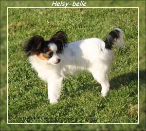helsy-belle-a-7-mois-3.jpg