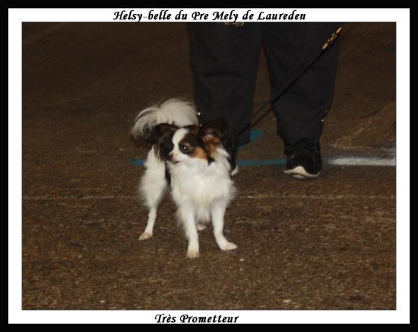 helsy-belle-rouen-12-2012-2.jpg