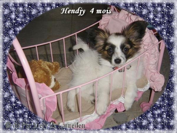 hendjy-8.jpg