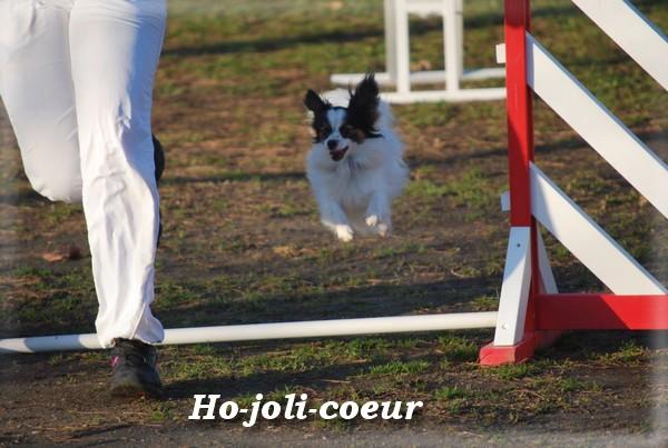 ho-joli-coeur-9-mois-3.jpg