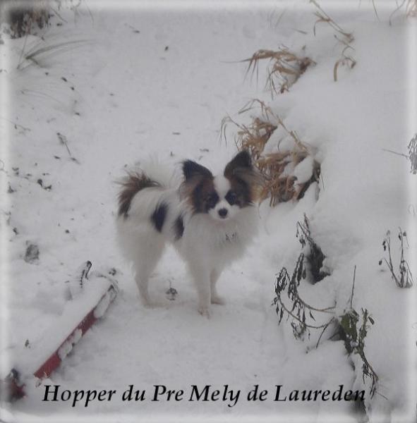hopper-8-mois-4.jpg
