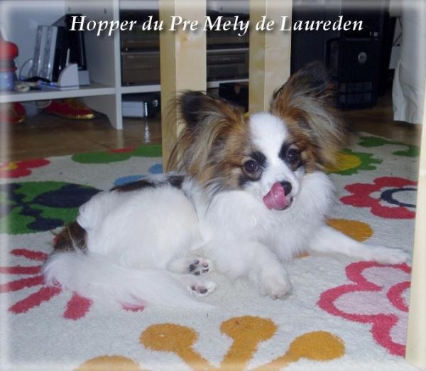 hopper-8-mois-5.jpg