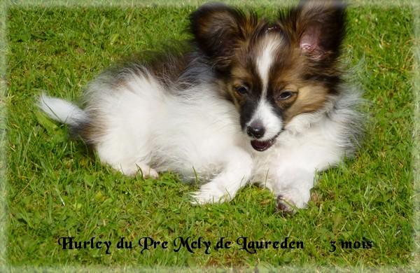hurley-3-mois-2.jpg