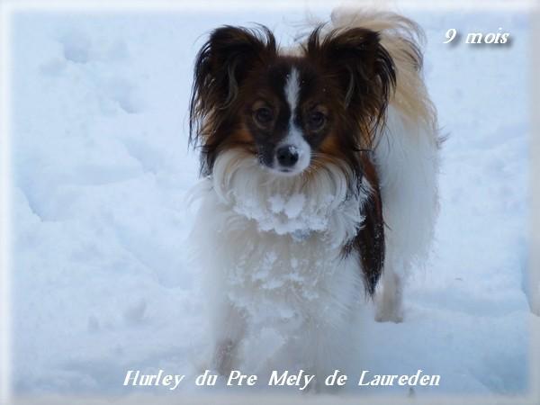 hurley-9-mois-5.jpg