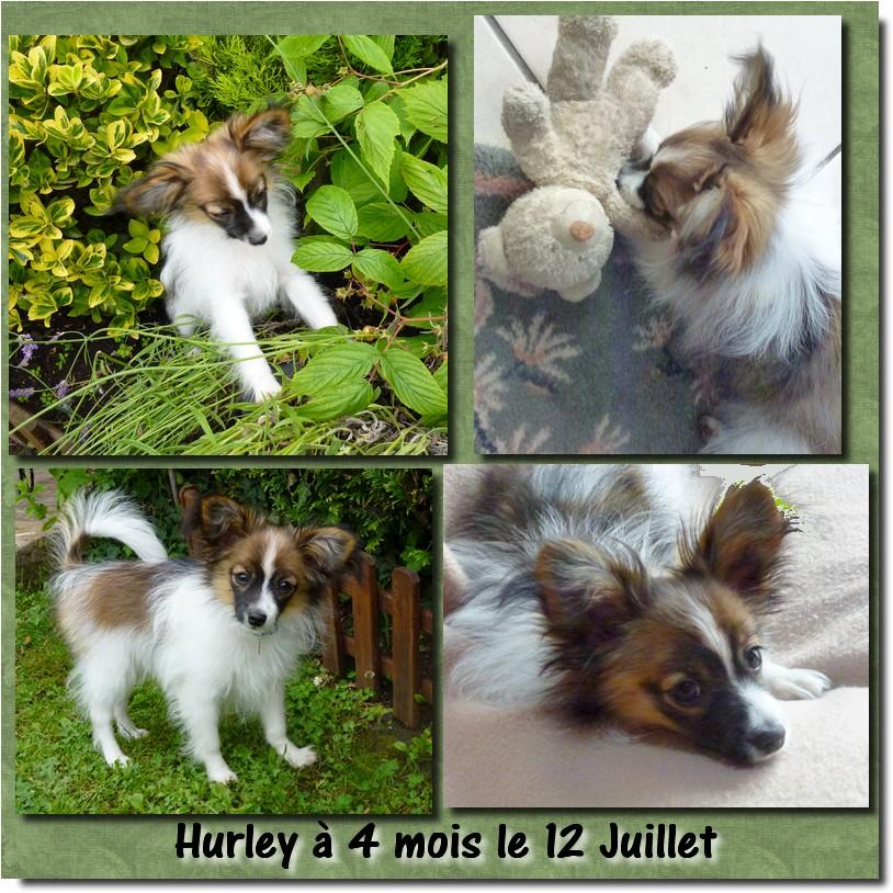 hurley-a-4-mois.jpg