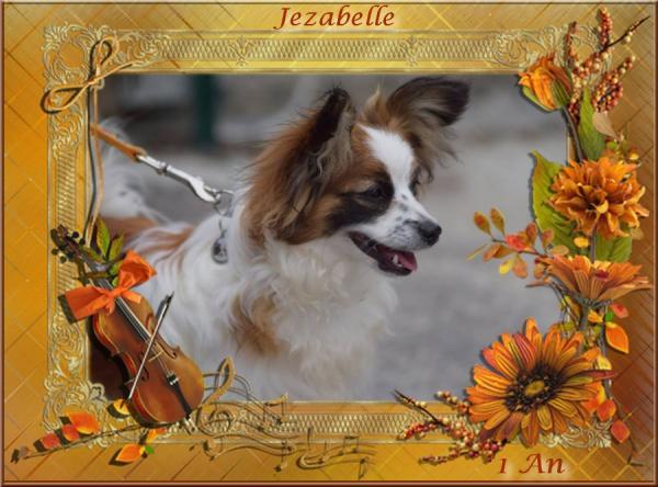 Jezabelle 1 an 16 10 20158