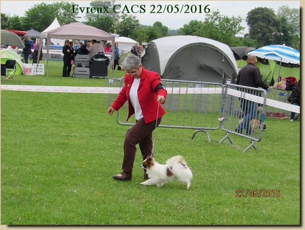 Lady evreux cacs 05 2016 2