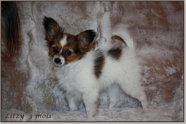 Litzy 3 mois 2