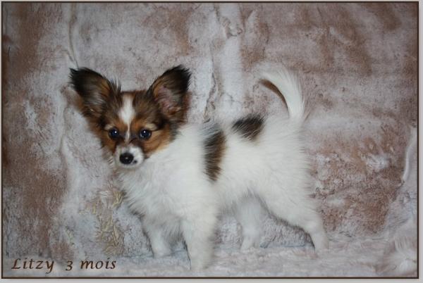 Litzy 3 mois 3