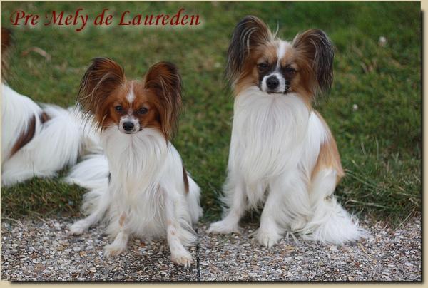 Litzy et lorenzo 12 07 2016