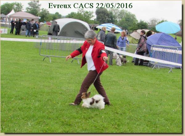 Litzy evreux cacs 05 2016 2