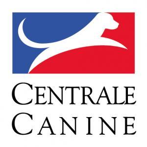 Logo scc positif rvb
