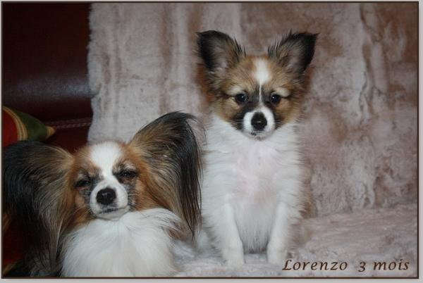 Lorenzo 3 mois 2