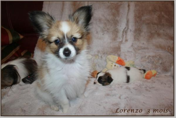 Lorenzo 3 mois 3