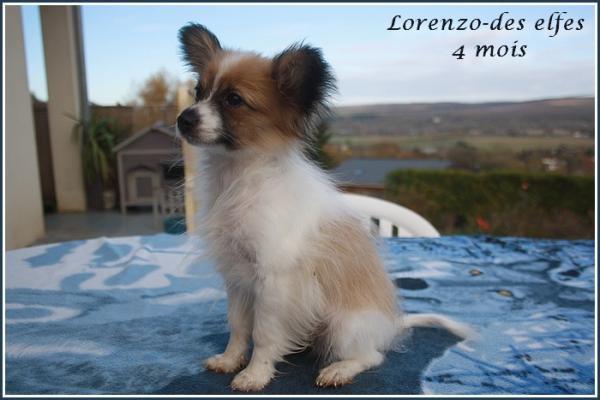 Lorenzo 4 mois 3