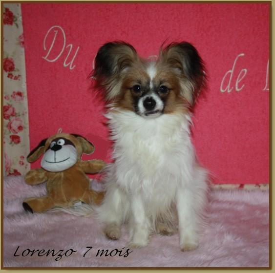 Lorenzo 7 mois 4