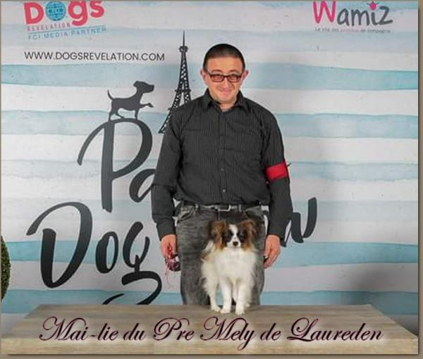 Mai lie paris dog show 2