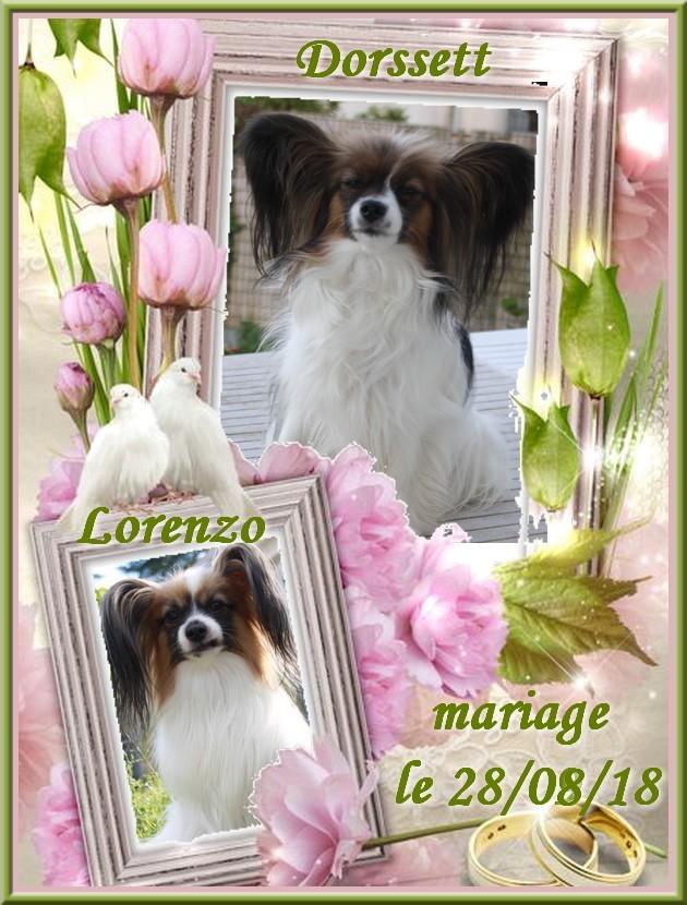 Mariage dorssett et lorenzo 2