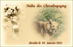 nalia-decede-le-03-01-2012-1.jpg