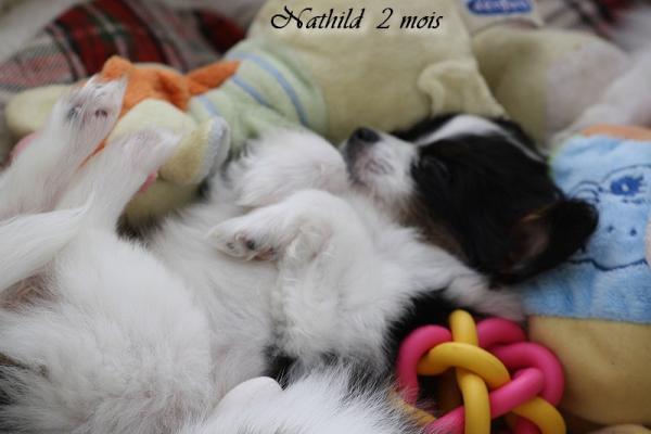 Nathild 8 semaines 0