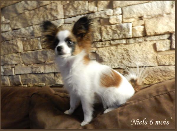 Niels 6 mois 2