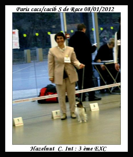 paris-dog-show-08-01-2012-noisette-3.jpg