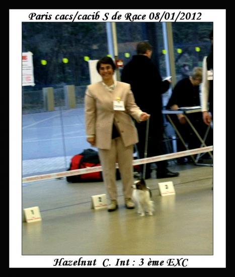 paris-dog-show-08-01-2012-noisette-3.jpg