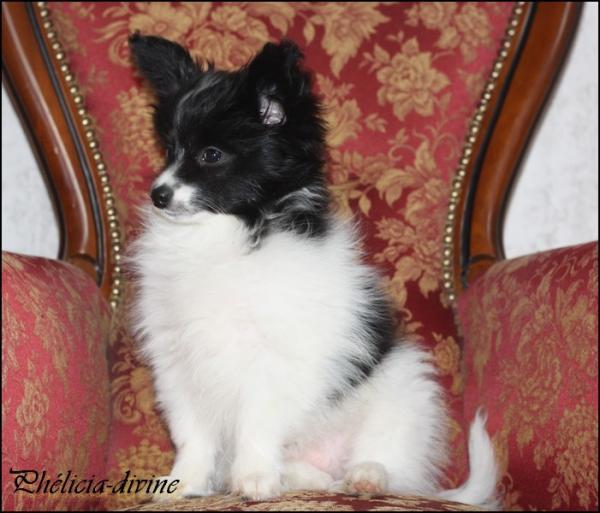 Phelicia 3 mois 2
