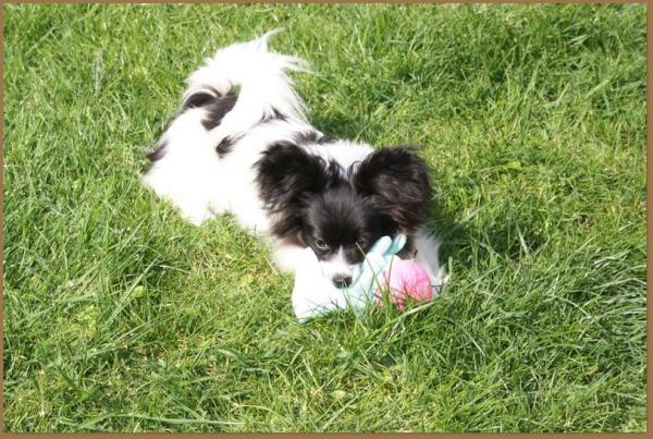 Phelicia 6 mois 5