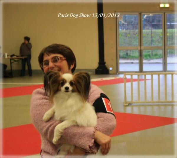 x-mystix-paris-dog-show-01-2013-8.jpg